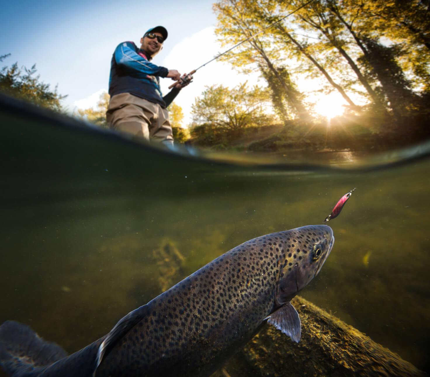 Comment pêcher la truite en rivière : nos astuces d'experts !