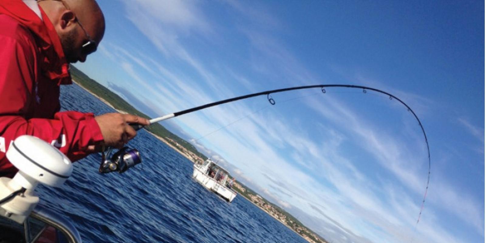 Pêche au feeder en mer : conseils de nos experts